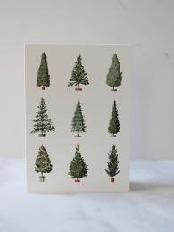 Laura Stoddart Christmas TRee Cards Sally Bourne Interiors London Muswell Hill Greetings Cards