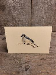 Mini Blue Jay Card Penny Lindop Sally Bourne Interiors