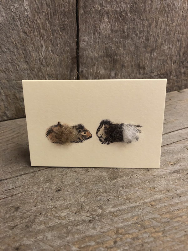 Mini Guinea Pigs Card Penny Lindop Sally Bourne Interiors London Muswell Hill Greeting Cards
