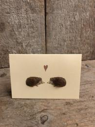 Mini Hedgehogs Card Penny Lindop Sally Bourne Interiors London Muswell Hill Greeting cards