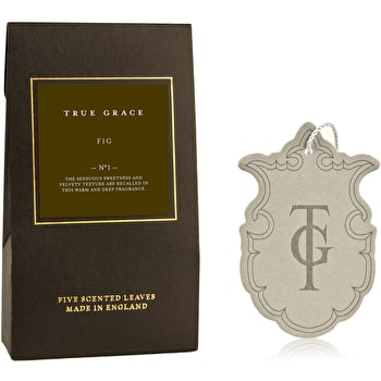 True Grace Leaves Fig Room Scent Sally Bourne Interiors London