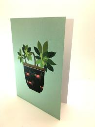 A tasteful greetings card, featuring a succulent design. With a duck egg background and a bold picture in the centre. Blank for your own message.