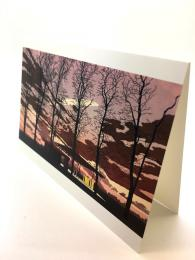 A greetings card featuring the work of award-winning illustrator, Finn Dean. Blank on the inside for your own message. Landscape layout.