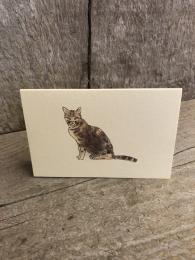 Mini Tabby Cat Card Penny Lindop Sally Bourne Interiors London UK Greetings Cards