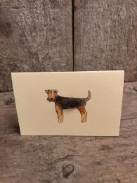 Mini Welsh Terrier Card Penny Lindop Sally Bourne Interiors Muswell