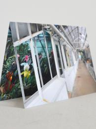 Window Corridor Card Sally Bourne Interiors London Muswell Hill Greetings Cards